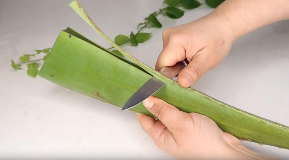 Comment fabriquer un masque pour cheveux avec de l'aloe vera et de l'huile de coco