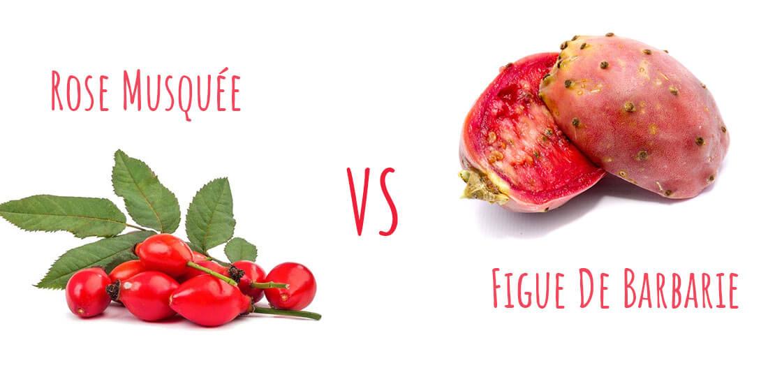 Comparatif entre rose musquée et pépins de figue de barbarie